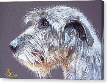 Irish Wolfhound  2 Canvas Print