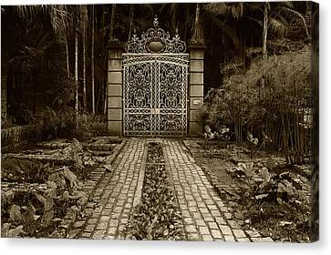 Iron Gate Canvas Print by Amarildo Correa