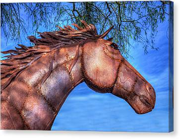 Canvas Print featuring the photograph Iron Horse by Paul Wear