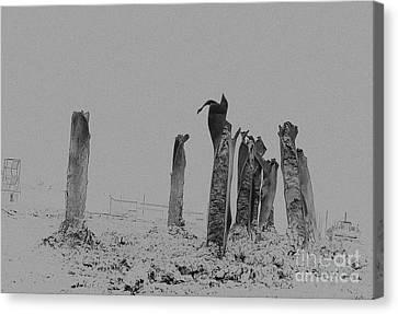 D700 Canvas Print - Ironhenge by Fred Lassmann