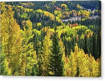 Canvas Print featuring the photograph Ironton Fall Color by Ray Mathis