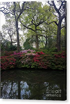 Isabella Plantation Canvas Print by Hanza Turgul