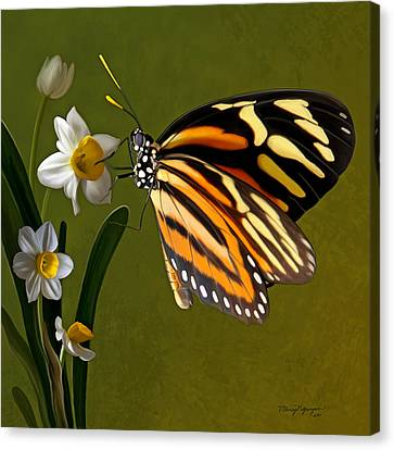 Isabella Tiger Butterfly Canvas Print by Thanh Thuy Nguyen