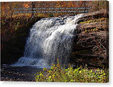 Canvas Print featuring the photograph Isaiah 44 by Diane E Berry
