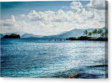 Island Blues Canvas Print by Camille Lopez