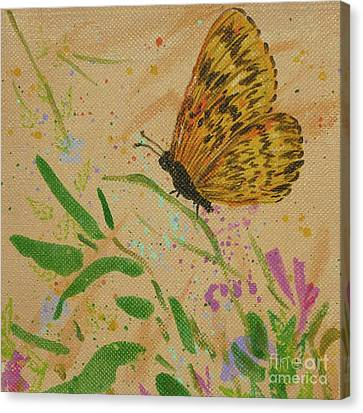 Island Butterfly Series 4 Of 6 Canvas Print