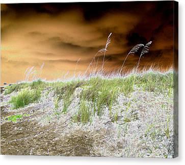 Island Dune Canvas Print by Peter  McIntosh