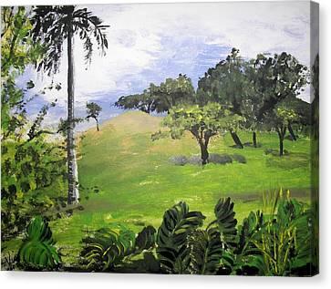 Island Mood Canvas Print by Judy Via-Wolff