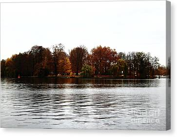 Island Of Trees Canvas Print