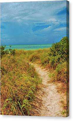 Island Path Canvas Print