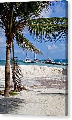 Island Scene Canvas Print by Mamie Thornbrue