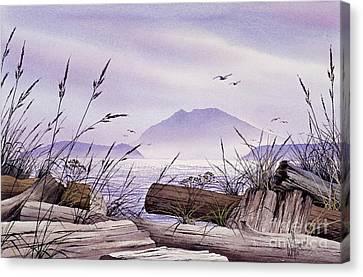 Island Splendor Canvas Print by James Williamson