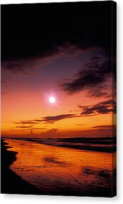 Isle Of Palms Canvas Print by Gerard Fritz