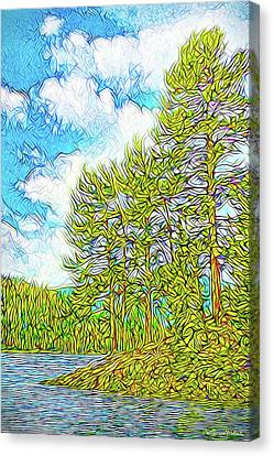 Isle Of Pines - Nederland Colorado Canvas Print by Joel Bruce Wallach