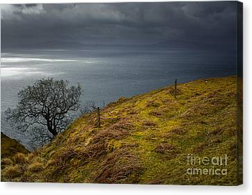 Isle Of Skye Views Canvas Print by Nichola Denny