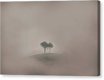 Wine Scene Canvas Print - Isolation by Az Jackson