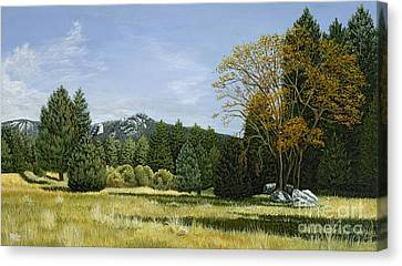 Isomata Meadow Canvas Print