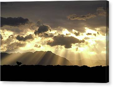 Canvas Print featuring the photograph Israeli Desert Sunrise At Timna by Yoel Koskas