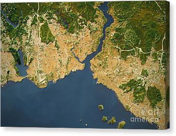 Istanbul City Topographic Map Natural Color Canvas Print by Frank Ramspott