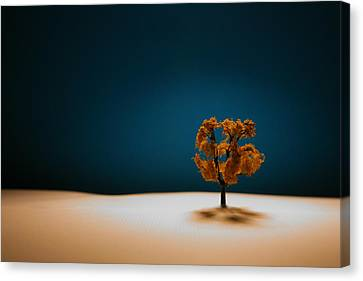 Trees Canvas Print - It Is Always There by Mark  Ross