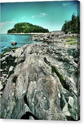Canvas Print featuring the photograph It Rocks  by Aimelle