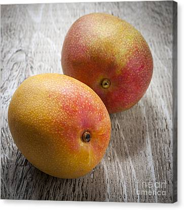 Mango Canvas Print - It Takes Two To Mango by Elena Elisseeva