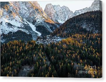 Forest Canvas Print - Italian Alps II by Yuri Santin
