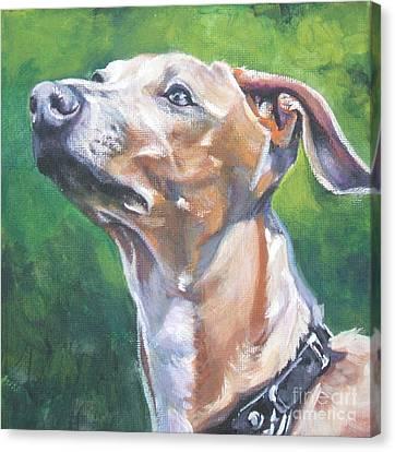 Italian Greyhound Canvas Print by Lee Ann Shepard