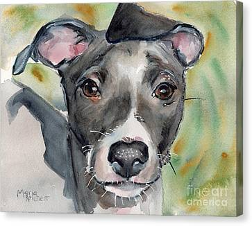 Greyhound Canvas Print - Italian Greyhound Watercolor by Maria's Watercolor