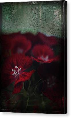 Stamen Canvas Print - It's A Heartache by Laurie Search