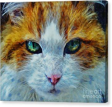 Face Canvas Print - Its In The Eyes by Ian Mitchell