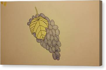It's Just Grapes... Canvas Print by Andrew Rice