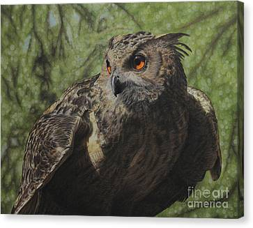 Ivan Canvas Print by Jennifer Watson