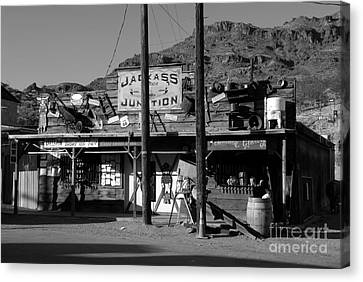 Jackass Junction Canvas Print by David Lee Thompson
