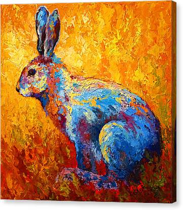 Jackrabbit Canvas Print by Marion Rose