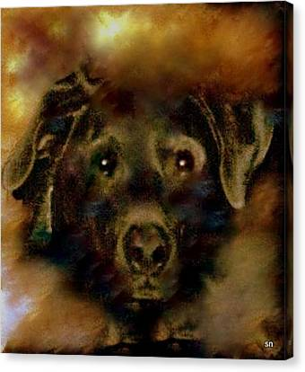 Jade-my Special Lab Canvas Print by Sherri's Of Palm Springs