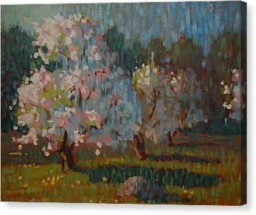 Jaeschke Orchard Canvas Print by Len Stomski