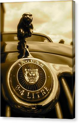 Canvas Print featuring the photograph Jaguar Car Mascot by John Colley