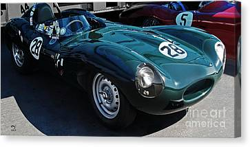 Jaguar D Type Canvas Print by Curt Johnson