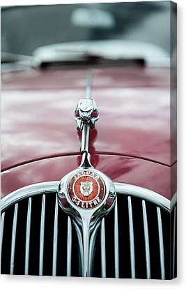 Jaguar Grille Canvas Print
