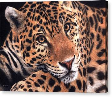 Jaguar Painting Canvas Print by Rachel Stribbling