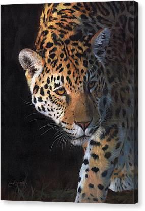 Jaguar Portrait Canvas Print by David Stribbling