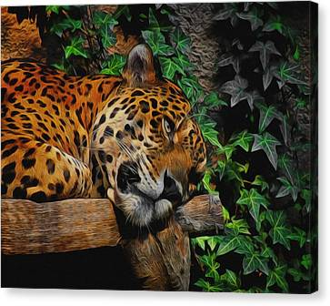 Jaguar Relaxing Canvas Print by Ernie Echols