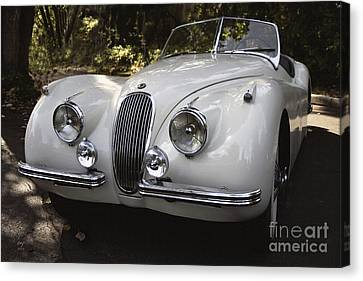 Jaguar Xk-120 Canvas Print by Curt Johnson
