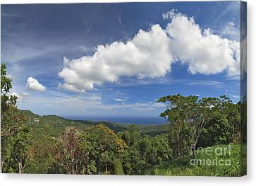 Jamaican Coastal Panorama Canvas Print by Charles Kozierok
