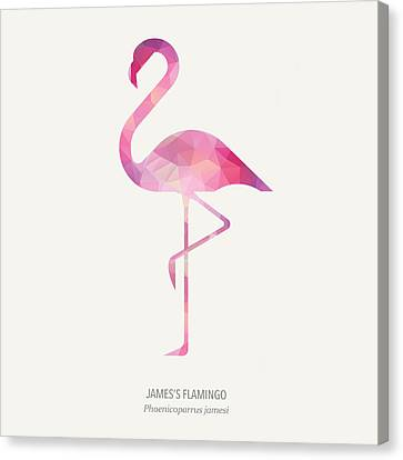James's Flamingo Canvas Print