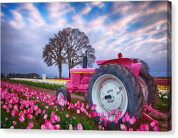Jane Deere Canvas Print