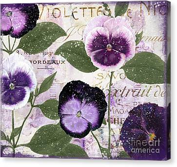 January Purple Pansies Canvas Print by Mindy Sommers