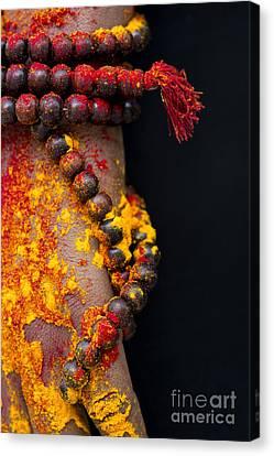 Japa Canvas Print by Tim Gainey