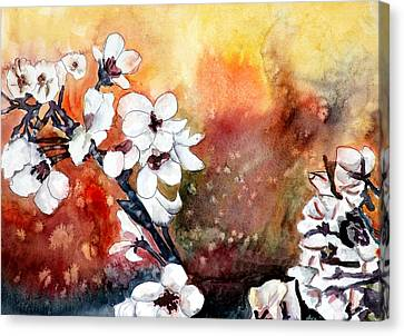 Japanese Cherry Blossom Abstract Flowers Canvas Print by Derek Mccrea